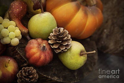 Autumn Fruit Poster by Mythja  Photography