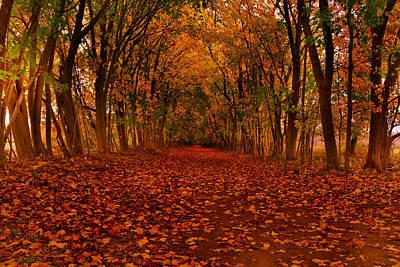 Autumn II Poster by Raymond Salani III