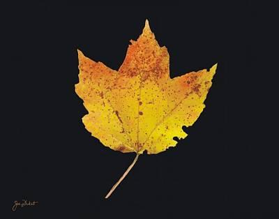 Autumn Mountain Maple Leaf Poster