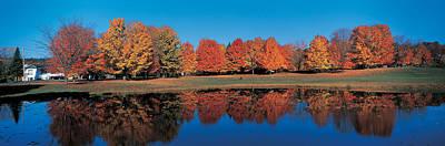 Autumn Trees Laurentide Quebec Canada Poster
