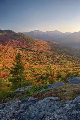 Autumn Trees On Mountain, Baxter Poster