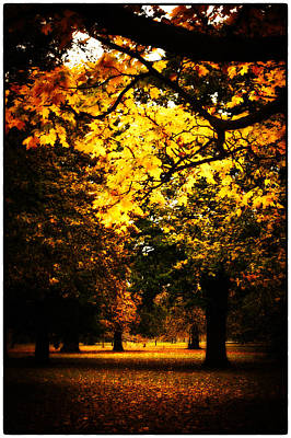 Autumnal Walks Poster by Lenny Carter