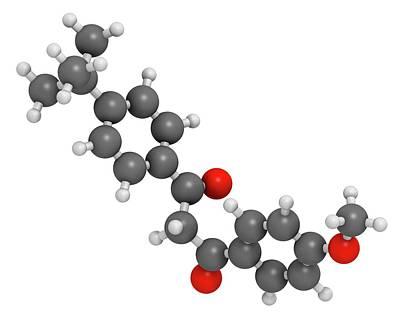 Avobenzone Sunscreen Molecule Poster by Molekuul