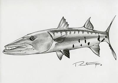 Barracuda Poster by Pedro  Prieto