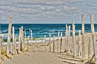 Beach At Cape Cod Poster by Patricia Hofmeester