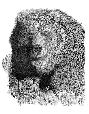 Bear 1 Poster