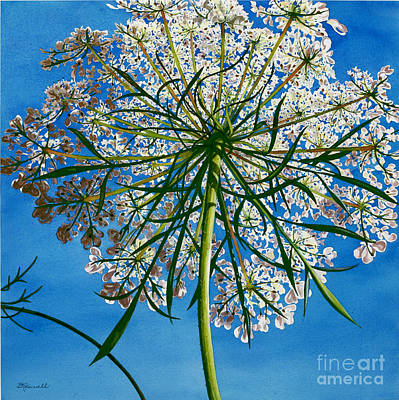 Poster featuring the painting Beneath Queen Anne's Lace  by Barbara Jewell