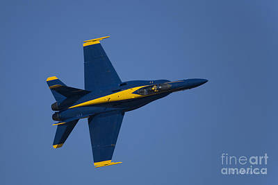 Blue Angels Fly Boy Poster