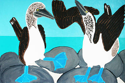 Blue Footed Boobies. Poster by Matthew Brzostoski