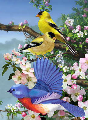 Bluebird And Goldfinch Poster