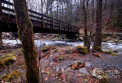 Bridge Over The Little Pigeon River Poster
