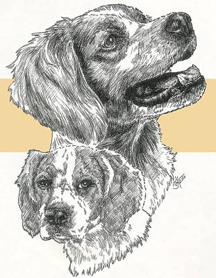 Brittany Spaniel Puppies Poster by Barbara Keith