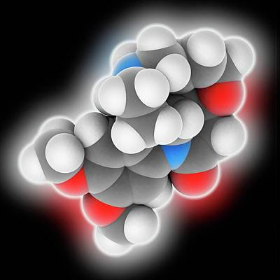 Brucine Molecule Poster by Laguna Design