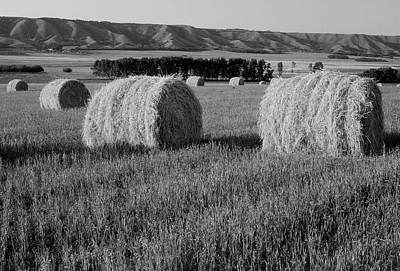 Canada, Manitoba, Rolled Hay Bales Poster by Jaynes Gallery
