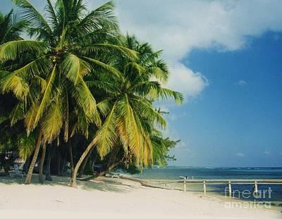 Caribbean Paradise Poster by John Clark