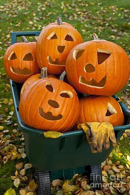 Carved Pumpkins In Wheelbarrow Poster by Jim Corwin