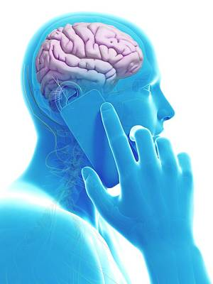 Cell Phone And Human Brain Poster by Sebastian Kaulitzki