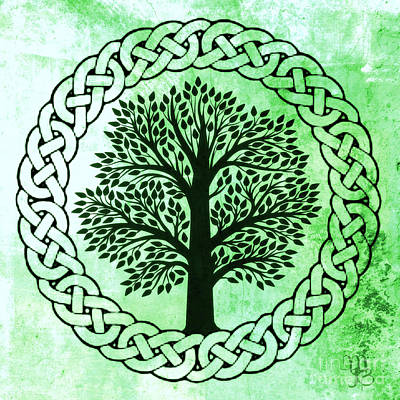Celtic Tree Of Life Poster by Mindy Bench