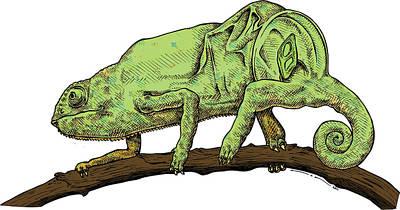 Chameleon Poster by Karl Addison