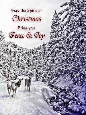 Christmas Peace And Joy Poster