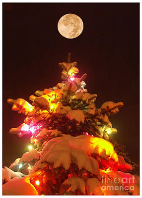 Poster featuring the digital art Christmas Tree Seneca Falls by Tom Romeo
