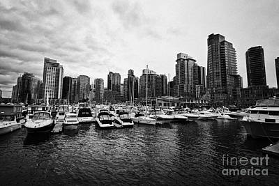 coal harbour marina and high rise apartment condo blocks in the west end Vancouver BC Canada Poster by Joe Fox