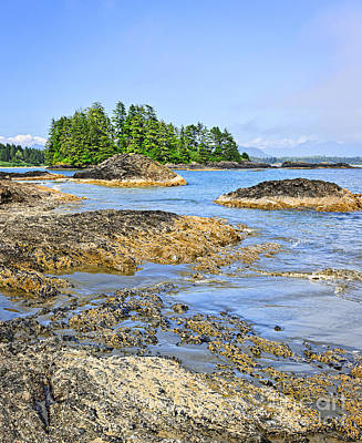 Coast Of Pacific Ocean On Vancouver Island Poster