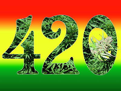 Colorful 420 Art Poster by Stock Pot Images