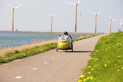 Colourful Wind Turbines Poster