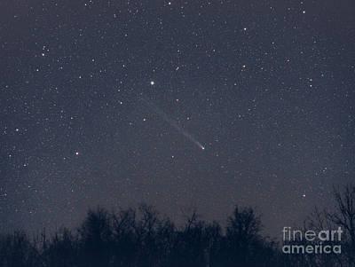 Comet Lovejoy, December 2013 Poster