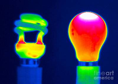Comparing Light Bulbs, Thermogram Poster