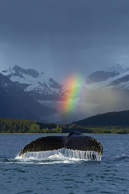 Composite Bright Rainbow Appears Over Poster by John Hyde