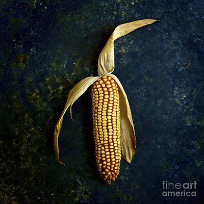Corn On The Cob Poster by Bernard Jaubert