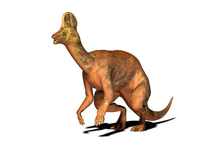 Corythosaurus Dinosaur Poster by Friedrich Saurer
