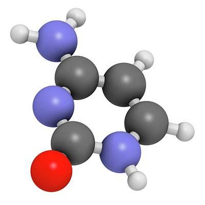 Cytosine Pyrimidine Nucleobase Component Poster by Molekuul