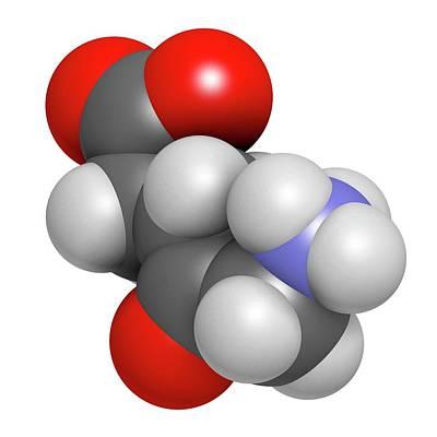 D-aminolevulinic Acid Ala Drug Molecule Poster