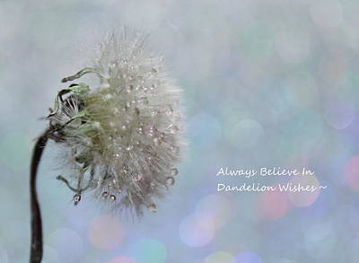 Dandelion Wishes Poster by Krissy Katsimbras