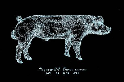 Danish Duroc Poster by Larry Campbell