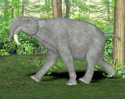 Deinotherium Prehistoric Mammal Poster