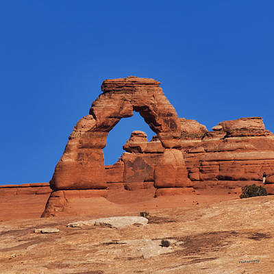 Delicate Arch Poster by Jim Lucas