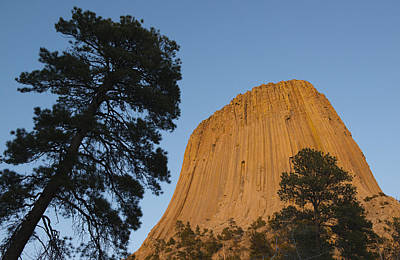 Devils Tower National Monument Wyoming Poster by Kevin Schafer