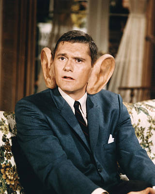 Dick York In Bewitched  Poster by Silver Screen