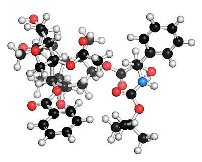 Docetaxel Cancer Drug Molecule Poster