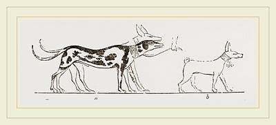 Dogs From Egyptian Paintings Poster by Litz Collection