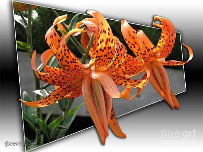 Double Tiger Lily Named Flora Pleno Poster