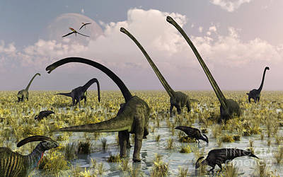 Duckbill Dinosaurs And Large Sauropods Poster