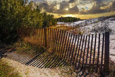 Dune  Poster by Debra and Dave Vanderlaan