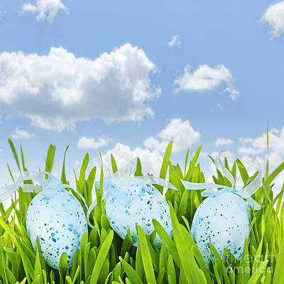 Easter Eggs In Green Grass Poster by Elena Elisseeva