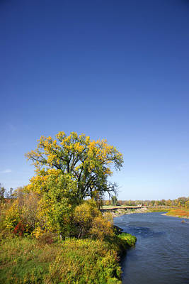 Fall Color And River Scene Poster