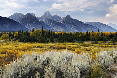 Fall In The Tetons Poster by Eric Foltz